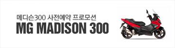 메디슨300